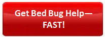get-bed-bug-help-fast