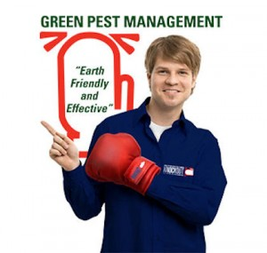 Residential Exterminators NYC | Long Island | Westchester | Rockland County