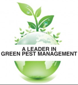 Green Pest Control Company | Knockout Pest Control