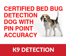 Bed Bug Detection Treatment Services In Nyc Li Westchester