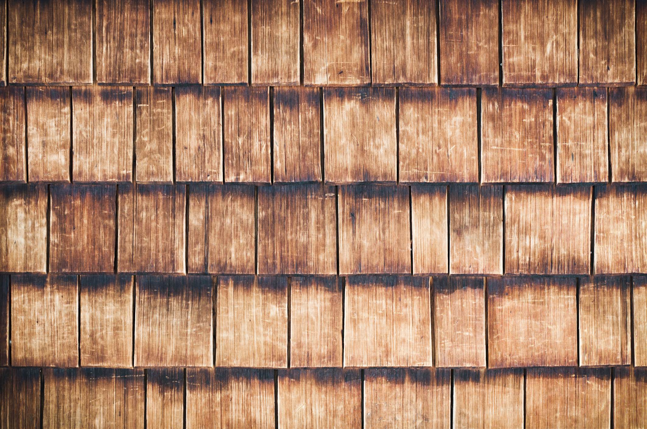 How To Keep Termites Away From Wood Siding